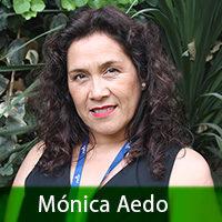 monica-aedo